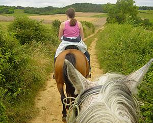 Randonnée à cheval dans le Morvan