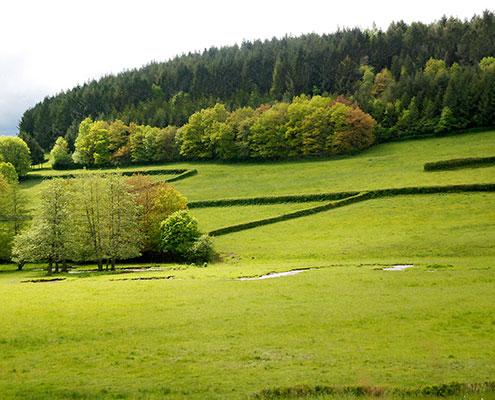 paysage autour avallon vezelay
